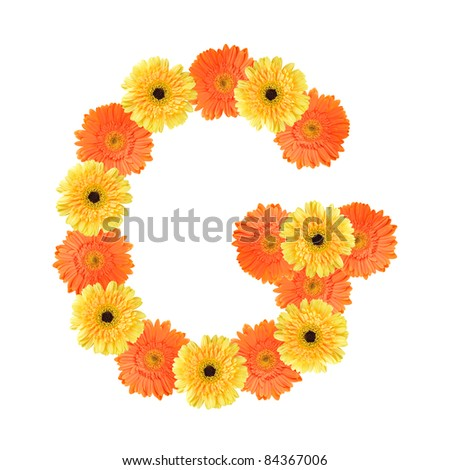 Yellow and orange daisy-gerbera create a letter G on white background ...