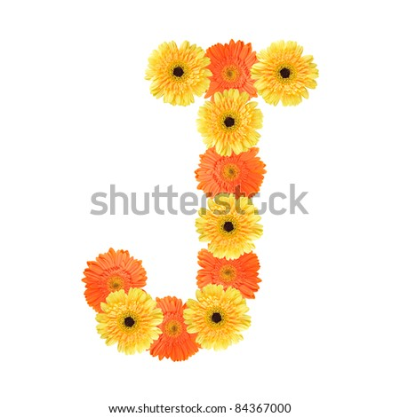 Yellow and orange daisy-gerbera create a letter J on white background ...