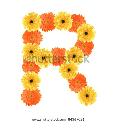Yellow and orange daisy-gerbera create a letter R on white background ...