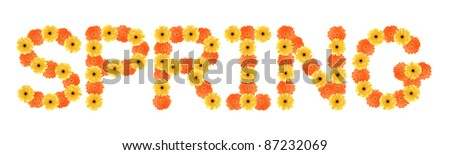 Yellow and orange daisy-gerbera create a spring word on white background.