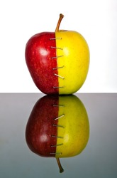 Yellow and red apple halves joined by staples