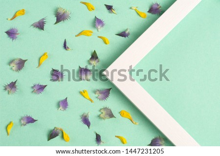 Yellow and violet petals and triangle frame on a green background. Top view, copy space. Flat lay.