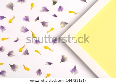 Yellow and violet petals and yellow triangle on a white background. Top view, copy space. Flat lay.