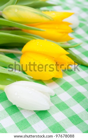 Yellow and White Tulips on Green Gingham Tablecloth