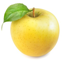 Yellow apple with leaves isolated on white background, Yellow Orin Apples on white background With clipping path