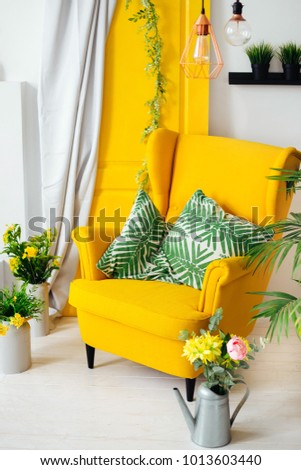 yellow armchair with pillows near the yellow door with a curtain and around them flowers and pots #1013603440