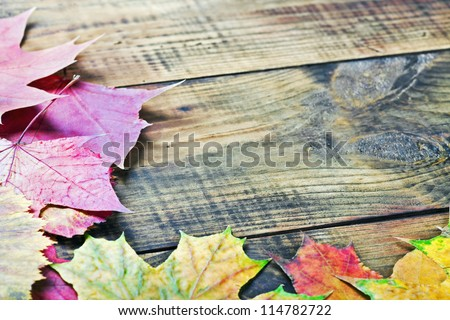 yellow autumn leaves on the background a old wood