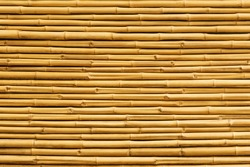 Yellow bamboo fence background and texture