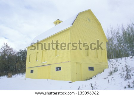 Yellow barn in a snow covered land, MI