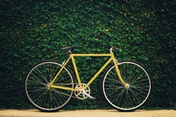 Yellow bicycle on leaf wall background, vintage style