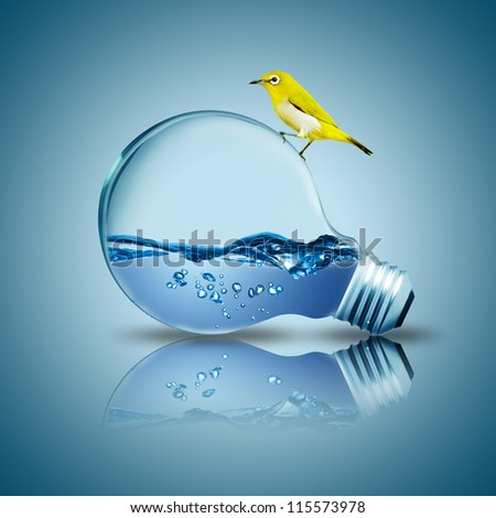 Yellow bird on light bulb with water inside. Concept for environmental friendly
