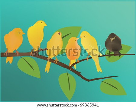 yellow birds and a black one