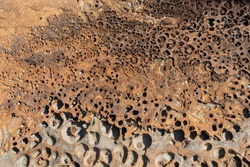 Yellow, black rock with dense holes that look like the surface of an alien planet, in the sunny day