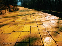 Yellow brick path with dramatic shadows