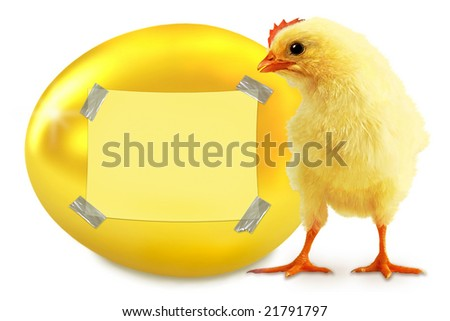 Yellow chicken and gold egg. Notice-board.