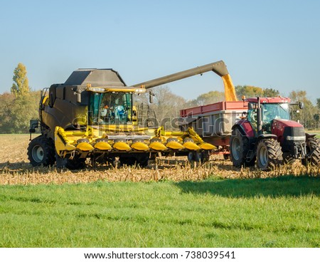 yellow combine harvester unloading corn seeds into the grain tank of the tractor trailer