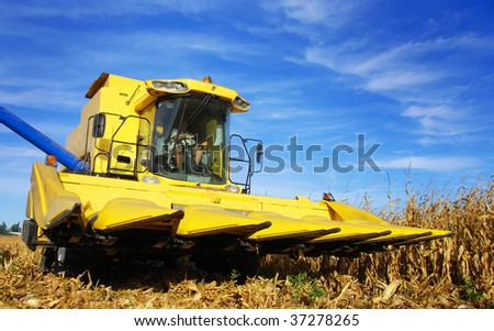 Yellow combine in a maize field
