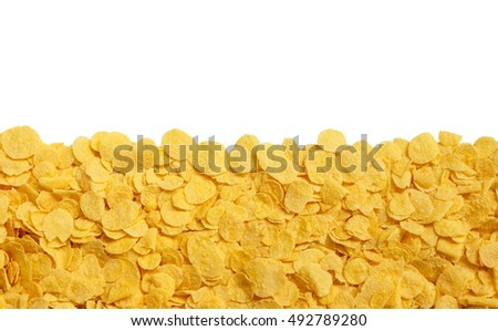 yellow crispy cornflakes isolated on a white background #492789280