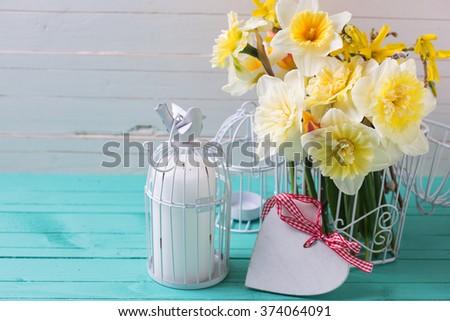 yellow daffodils flowers ...