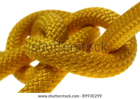Yellow dagger knot closeup. Isolated on white background