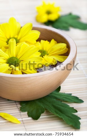 Yellow daisies in wooden bowl. Spa theme