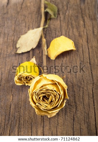 Yellow dried rose on an old wooden blackboard