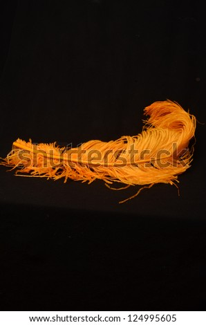 yellow feather on black background/Yellow Soft Plume/Soft feather resting on black background