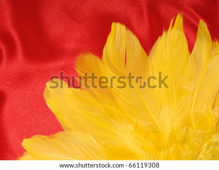 Yellow feathers on red fabric abstract background