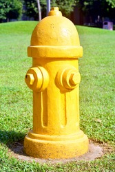 Yellow Fire Hydrant Reserve in the Park