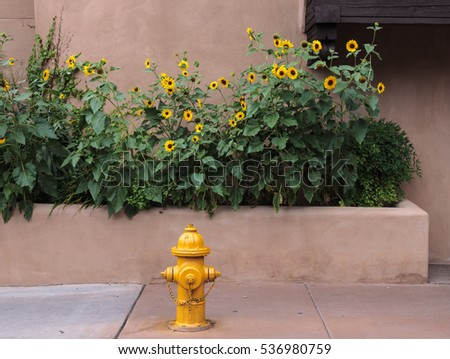 yellow fire hydrant with yellow flowers in background