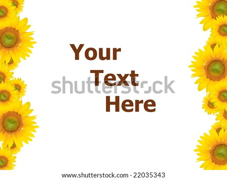 Yellow flower background, suitable for seasonal (summer or spring) designs, plenty of empty / copyspace for text