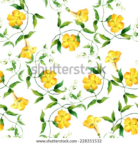 Yellow flower bindweed. Repeating floral pattern. Watercolor