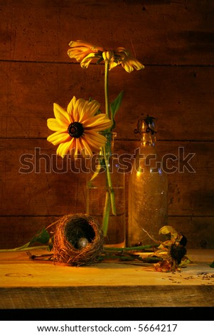 Yellow flower still life with antique bottle