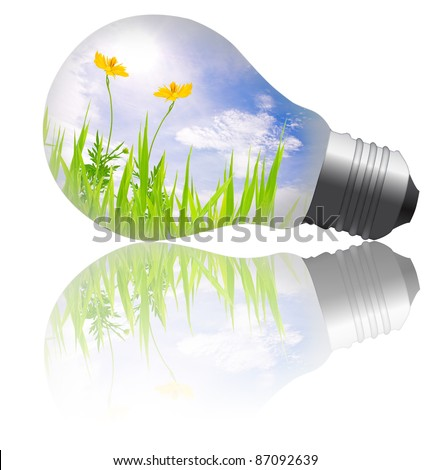 yellow flower with grass growing inside the light bulb