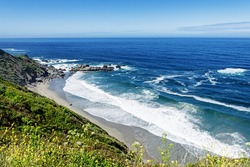 Yellow flowers, green grass, beautiful shimmering blue sea & aquamarine waters, gentle surf, along steep sheer jagged cliffs, the Big Sur Highway, on the California Central Coast, near Cambria CA.