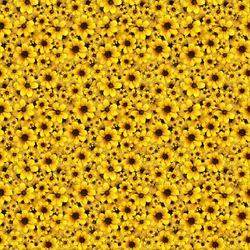 Yellow flowers seamless background pattern. High resolution