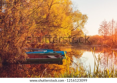 Yellow foliage on the trees in the fall on the river during sunset with views of the boats of fishermen near the riverbank #1216123099