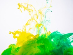 Yellow-green acrylic splash in liquid on white background close up. Two ink colours photographed while making an abstract acrylic splash. Silky cloud of acrylic color in water