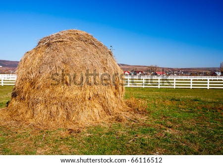 Yellow hay stack on a meadow in the countryside