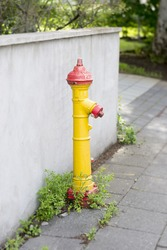 Yellow hydrant (fireplug) with red elements in Iceland