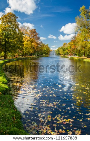 Yellow leaves in the autumn park and river