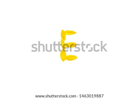 Yellow letter E from sunflower petals fonts,  alphabet element, beauty decorative  font isolate of a white background close-up #1463019887