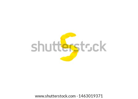 Yellow letter s from sunflower petals fonts,  alphabet element, beauty decorative  font isolate of a white background close-up #1463019371