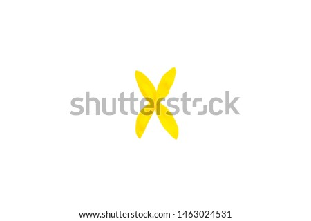 Yellow letter X from sunflower petals fonts,  alphabet element, beauty decorative  font isolate of a white background close-up #1463024531