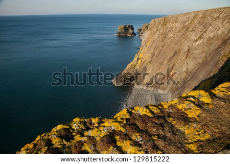 Yellow lichen covered rock on shale cliffs looking out towards a pebble beach and sea cliffs with the sea stack Trwyn y Tal in the distance. Wales coast path, Trefor, Lleyn peninsular, Wales, UK.