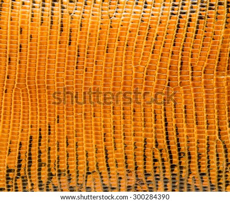 Yellow lizard skin, abstrat leather texture for background.