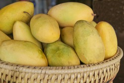 Yellow mangoes in a basket, Philippines
