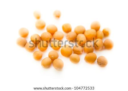 yellow mustard - stock photo