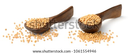 yellow mustard seeds in the wooden spoon, isolated on white #1061554946
