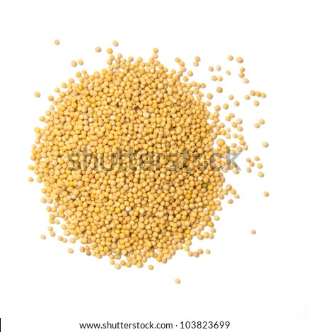 Yellow mustard seeds isolated
